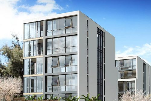 BILLBERGIA CONSTRUCTIONS – SUNRISE AT MEADOWBANK